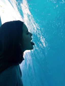 Licking the glacier!