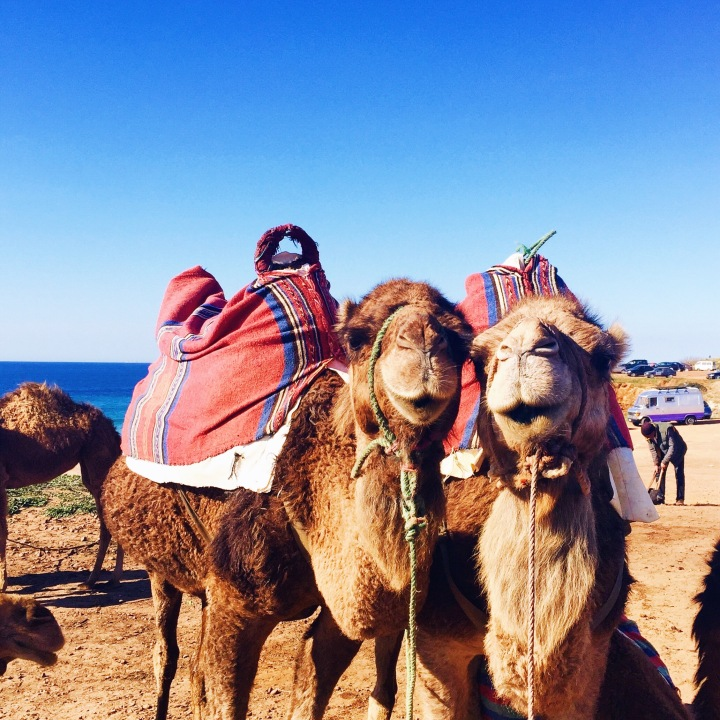 A Weekend inMorocco