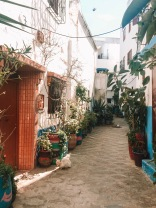 This alley was so lush and exotic looking
